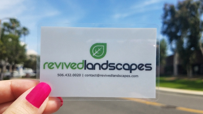 What You Need to Know Clear Plastic Business Cards Plus Nail Polish Edited